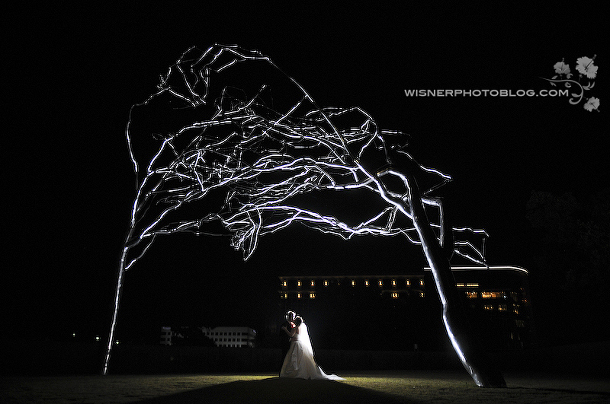 Modern-FortWorth-WisnerPhoto-Tree